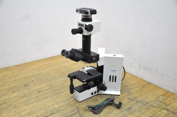 オリンパス/システム生物顕微鏡